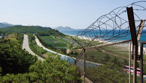gangwondo barbed wire