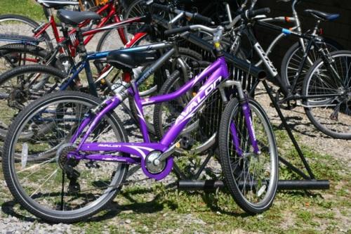 Purple Bike Cha Aug 4