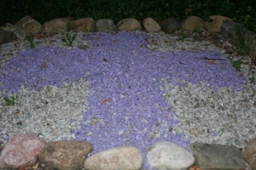 purplecross C Aug3